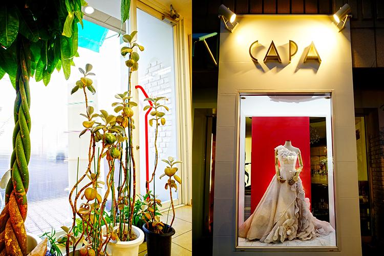 CAPA HAIR STUDIO Midorimachi